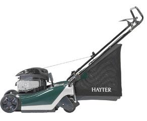 hayter4.jpg